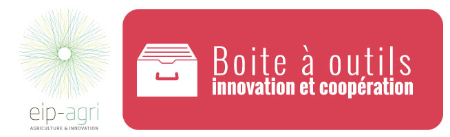 BO innovation cooperation