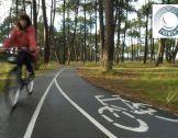 French Mobility -  les solutions de mobilité !
