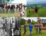 Concours photo : jeunes français et roumains parta...