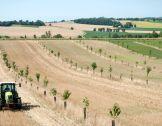 Conseil agricole : un enjeu et un atout pour la tr...