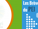 """Brèves PEI spécial """"Préparation de la PAC Pos..."""