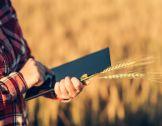 Flash thématique PEI juillet 2020 : Agricultu...
