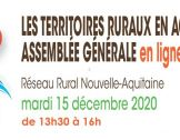 Retour sur l'Assemblée Générale 2020 du Résea...