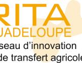 NEWSLETTER N°4 du RITA