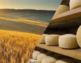 Instruments financiers pour l'agriculture et ...