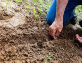 Renouvellement des générations agricoles : de...